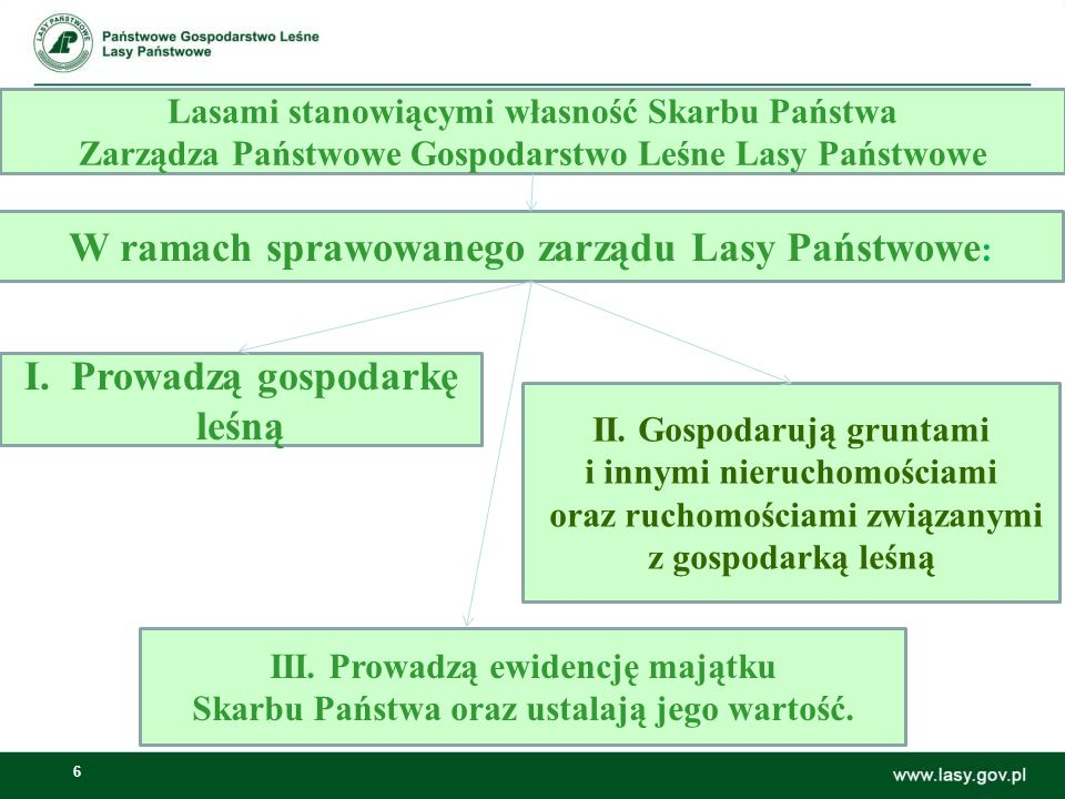 6 Lasami stanowiącymi własność Skarbu Państwa Zarządza Państwowe Gospodarstwo Leśne Lasy Państwowe W ramach sprawowanego zarządu Lasy Państwowe : I.Pr