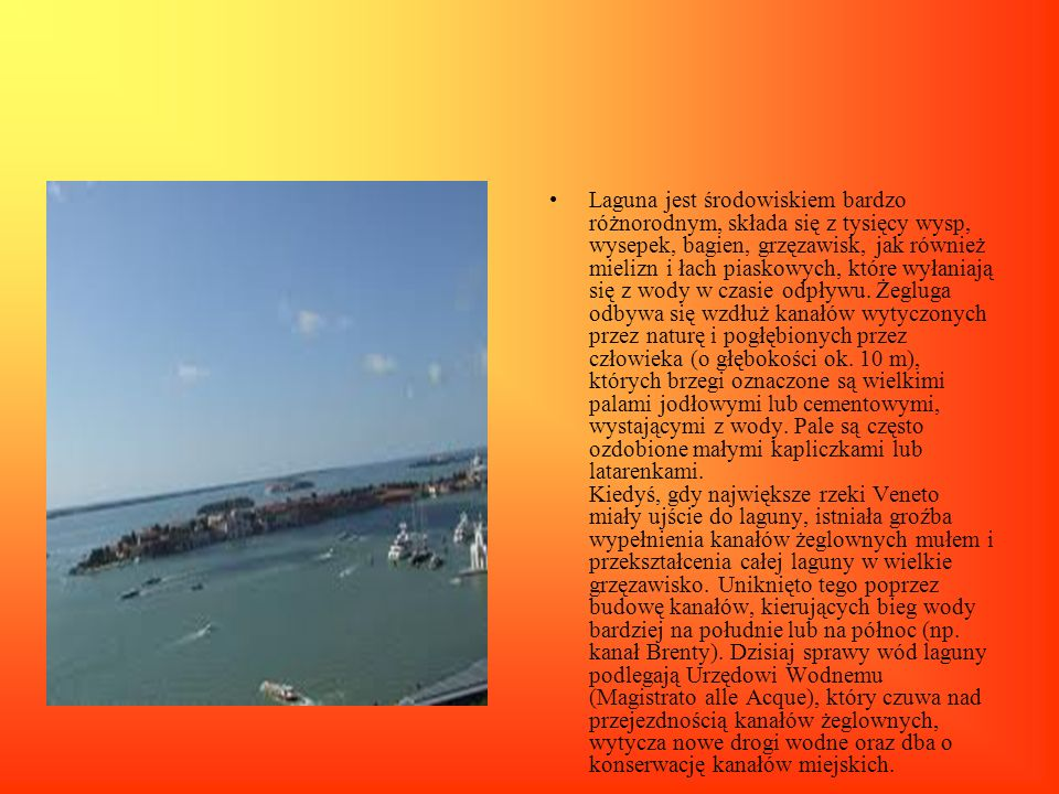 Laguna jest środowiskiem bardzo różnorodnym, składa się z tysięcy wysp, wysepek, bagien, grzęzawisk, jak również mielizn i łach piaskowych, które wyła