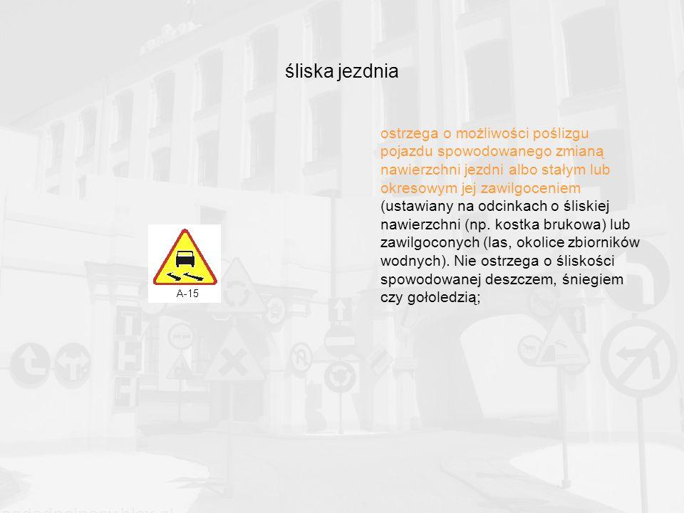 śliska jezdnia ostrzega o możliwości poślizgu pojazdu spowodowanego zmianą nawierzchni jezdni albo stałym lub okresowym jej zawilgoceniem (ustawiany na odcinkach o śliskiej nawierzchni (np.