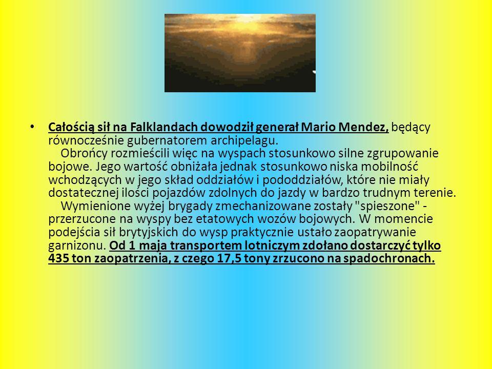 Całością sił na Falklandach dowodził generał Mario Mendez, będący równocześnie gubernatorem archipelagu. Obrońcy rozmieścili więc na wyspach stosunkow