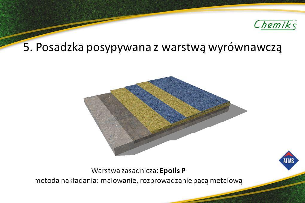 Warstwa zasadnicza: Epolis P metoda nakładania: malowanie, rozprowadzanie pacą metalową 5.