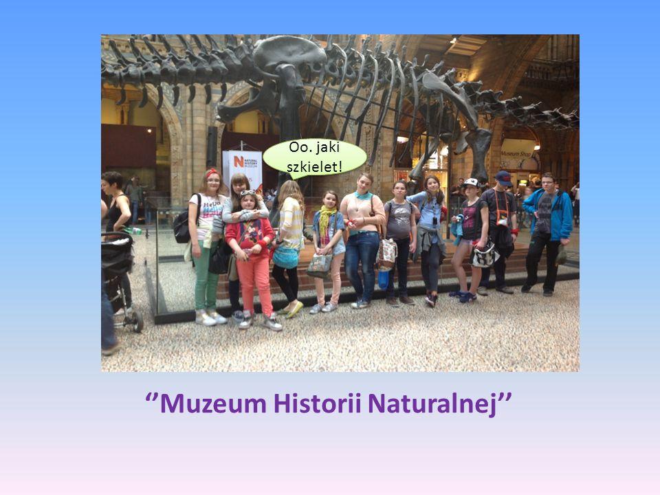 Muzeum Historii Naturalnej Oo. jaki szkielet!