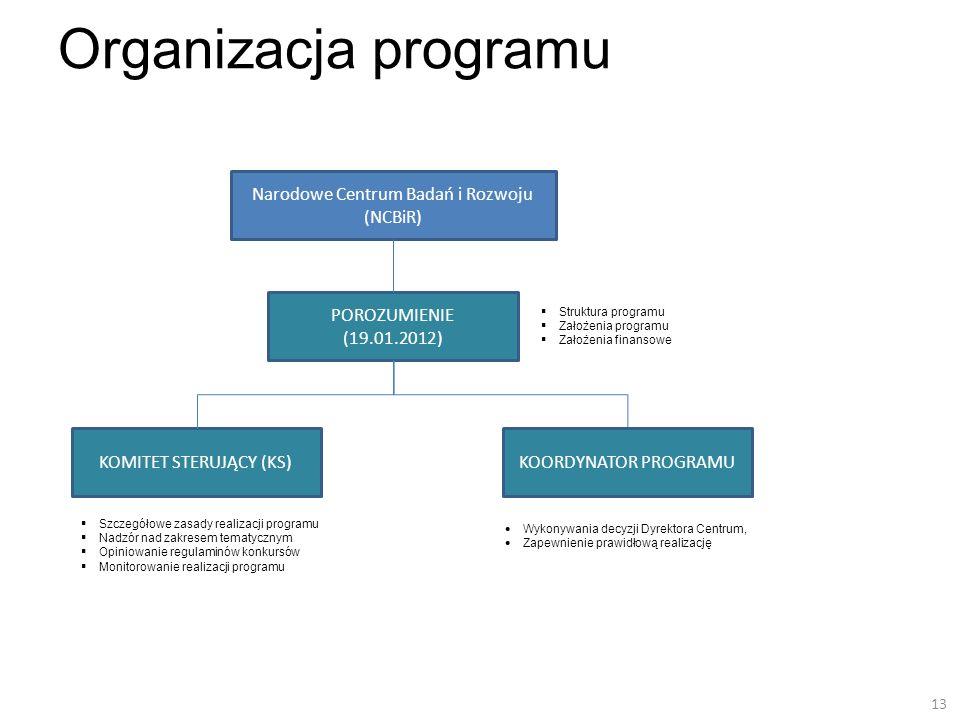 Organizacja programu Szczegółowe zasady realizacji programu Nadzór nad zakresem tematycznym Opiniowanie regulaminów konkursów Monitorowanie realizacji