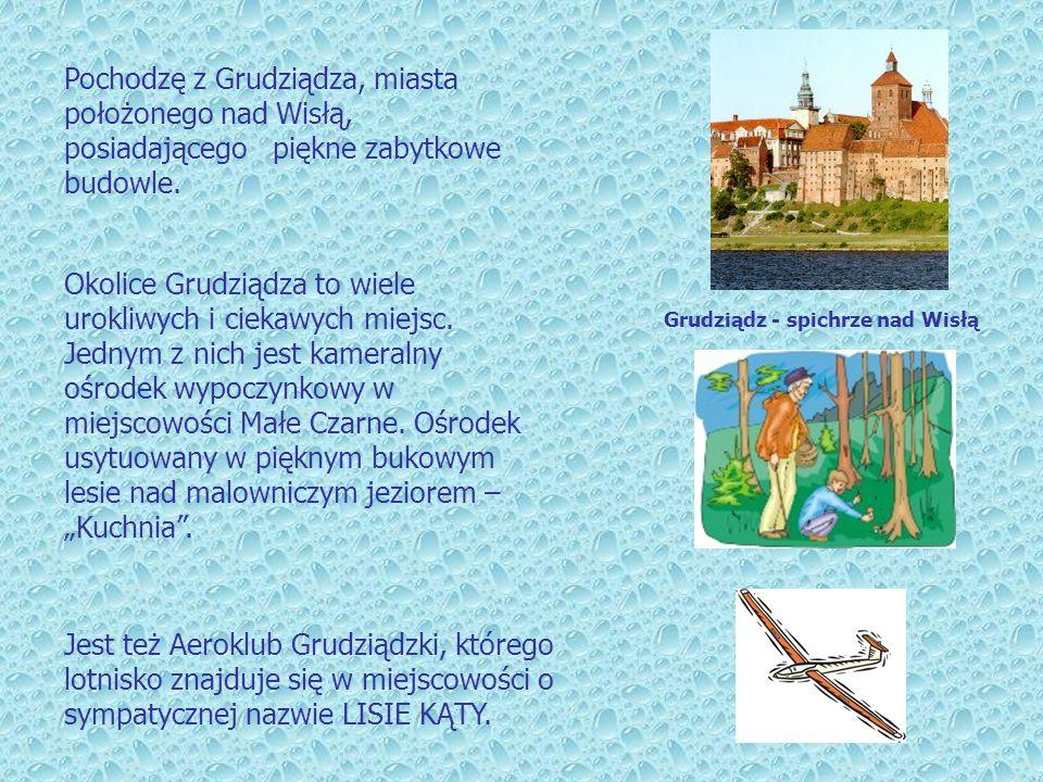 Jest też Aeroklub Grudziądzki, którego lotnisko znajduje się w miejscowości o sympatycznej nazwie LISIE KĄTY. Grudziądz - spichrze nad Wisłą Pochodzę