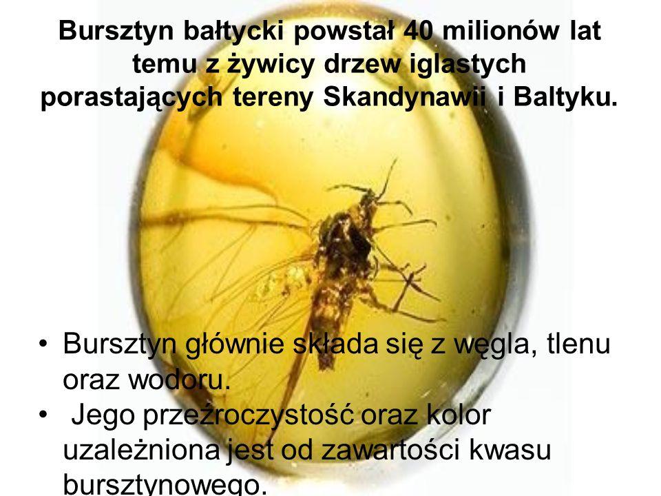 Bursztyn bałtycki powstał 40 milionów lat temu z żywicy drzew iglastych porastających tereny Skandynawii i Baltyku. Bursztyn głównie składa się z węgl