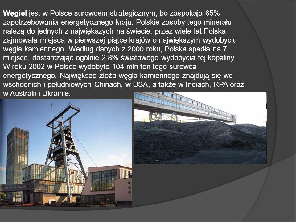 Węgiel jest w Polsce surowcem strategicznym, bo zaspokaja 65% zapotrzebowania energetycznego kraju. Polskie zasoby tego minerału należą do jednych z n