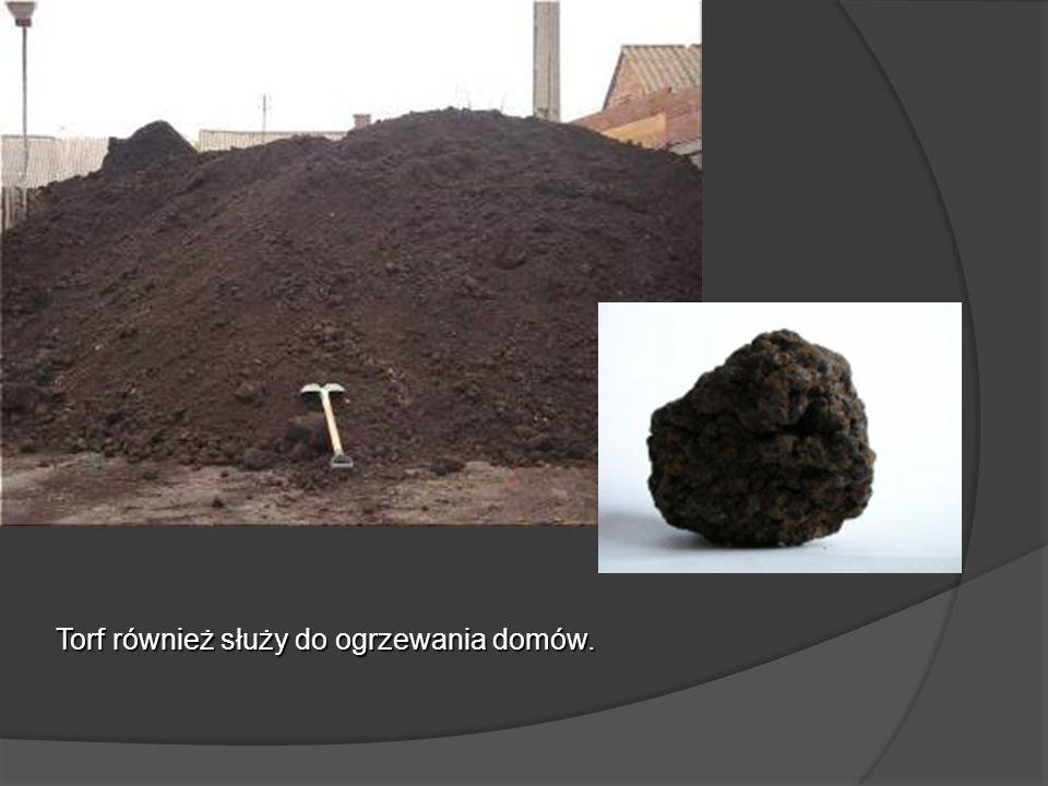 Opracowanie grupa eTwinning: S.Andreasik, E. Czenczek, N.