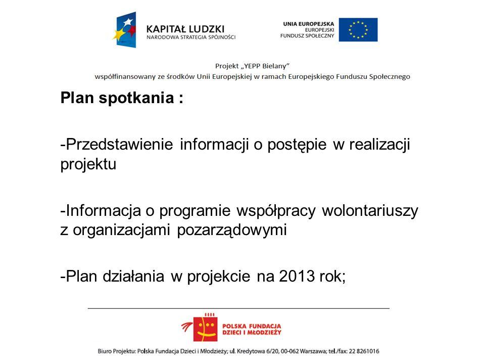 Plan spotkania : -Przedstawienie informacji o postępie w realizacji projektu -Informacja o programie współpracy wolontariuszy z organizacjami pozarządowymi -Plan działania w projekcie na 2013 rok;