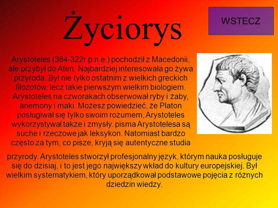 Życiorys WSTECZ Arystoteles (384-322r.p.n.e.) pochodził z Macedonii, ale przybył do Aten. Najbardziej interesowała go żywa przyroda. Był nie tylko ost