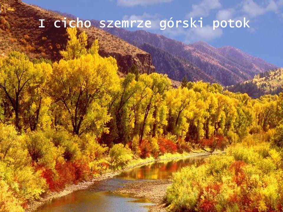 I cicho szemrze górski potok