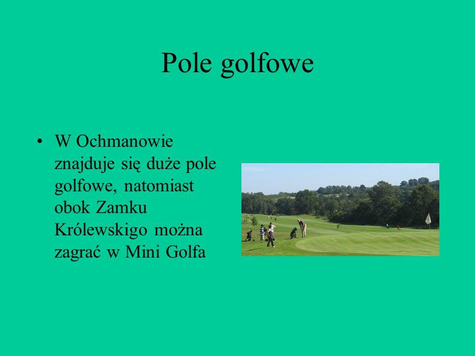 Pole golfowe W Ochmanowie znajduje się duże pole golfowe, natomiast obok Zamku Królewskigo można zagrać w Mini Golfa