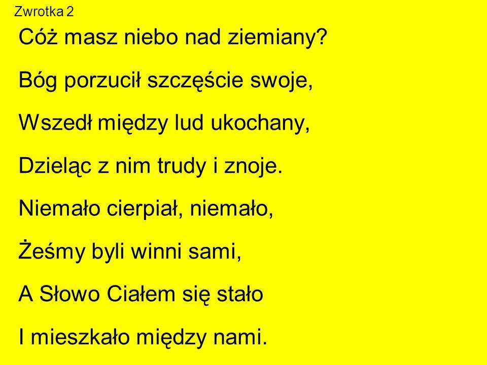 Zwrotka 3 W nędznej szopie urodzony, Żłób Mu za kolebkę dano.