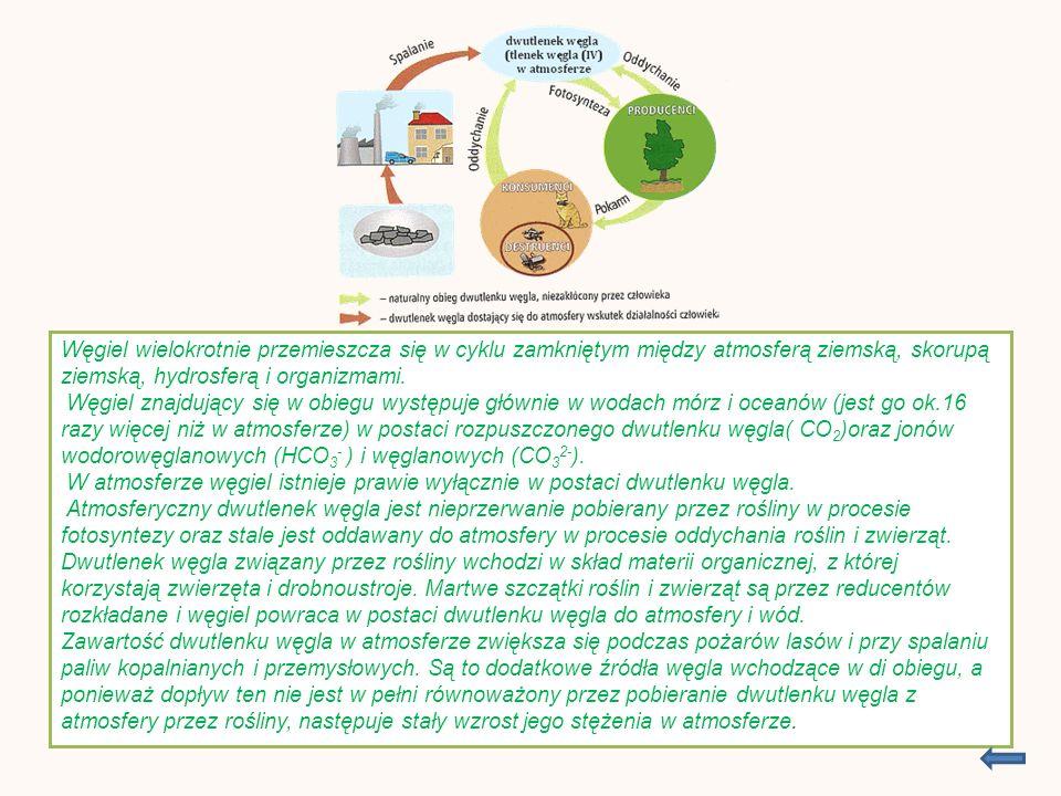 Bibliografia Chemia i my – podręcznik gim. http://www.chemia-gimnazjum.info.wikipedia.org