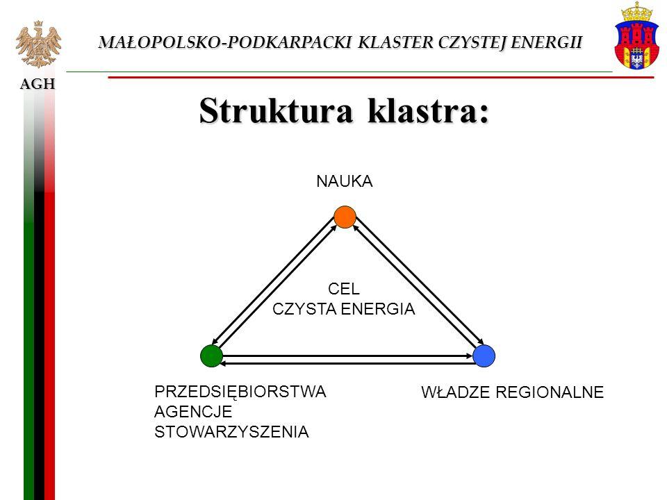 AGH Struktura klastra: NAUKA PRZEDSIĘBIORSTWA AGENCJE STOWARZYSZENIA WŁADZE REGIONALNE CEL CZYSTA ENERGIA