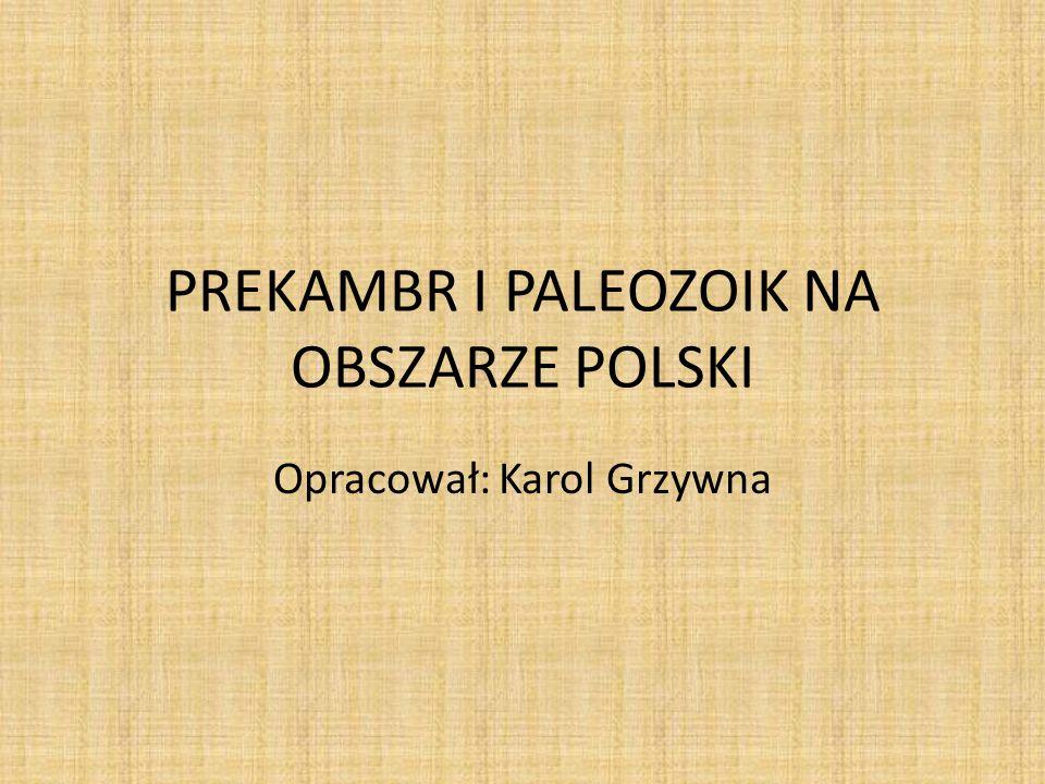 PREKAMBR I PALEOZOIK NA OBSZARZE POLSKI Opracował: Karol Grzywna