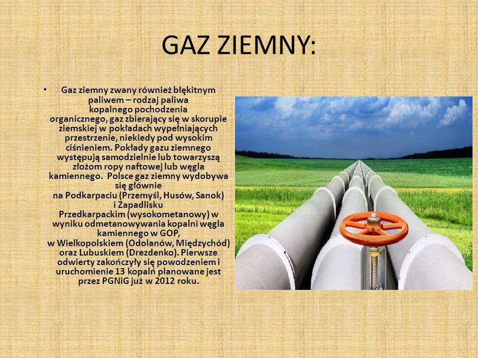 GAZ ZIEMNY: Gaz ziemny zwany również błękitnym paliwem – rodzaj paliwa kopalnego pochodzenia organicznego, gaz zbierający się w skorupie ziemskiej w pokładach wypełniających przestrzenie, niekiedy pod wysokim ciśnieniem.