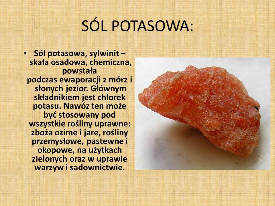SÓL POTASOWA: Sól potasowa, sylwinit – skała osadowa, chemiczna, powstała podczas ewaporacji z mórz i słonych jezior. Głównym składnikiem jest chlorek
