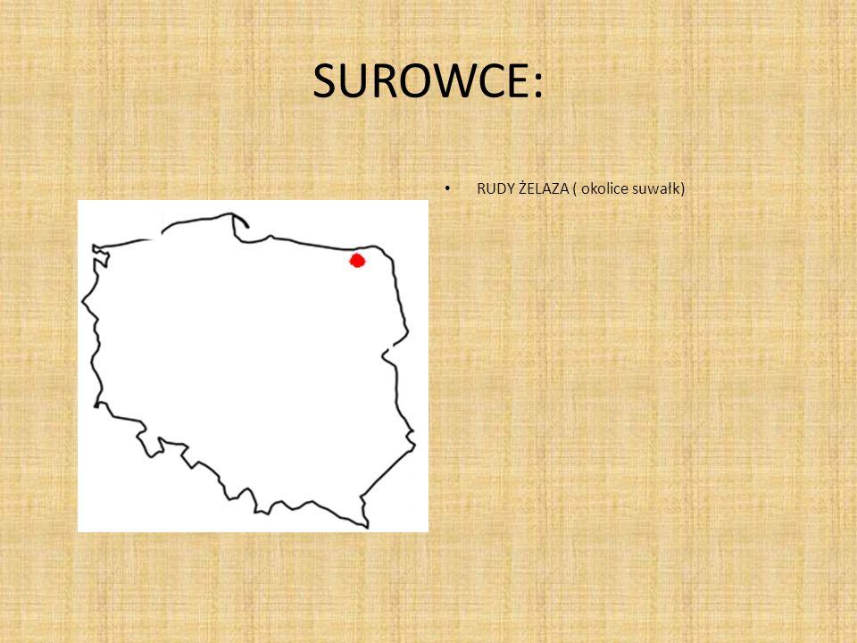 WYKORZYSTANIE SUROWCÓW: W Polsce zasobów żelaza w okolicach Suwałk nie wydobywa się w związku z groźbą zaistnienia katastrofy ekologicznej oraz z uwagi na głębokie położenie złóż