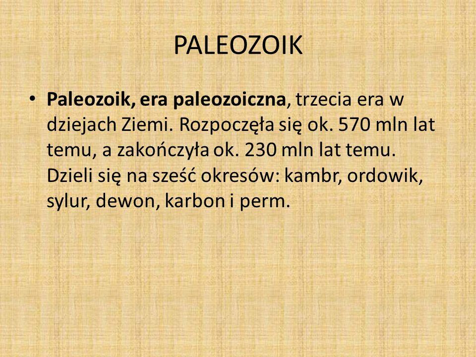 PALEOZOIK Paleozoik, era paleozoiczna, trzecia era w dziejach Ziemi. Rozpoczęła się ok. 570 mln lat temu, a zakończyła ok. 230 mln lat temu. Dzieli si