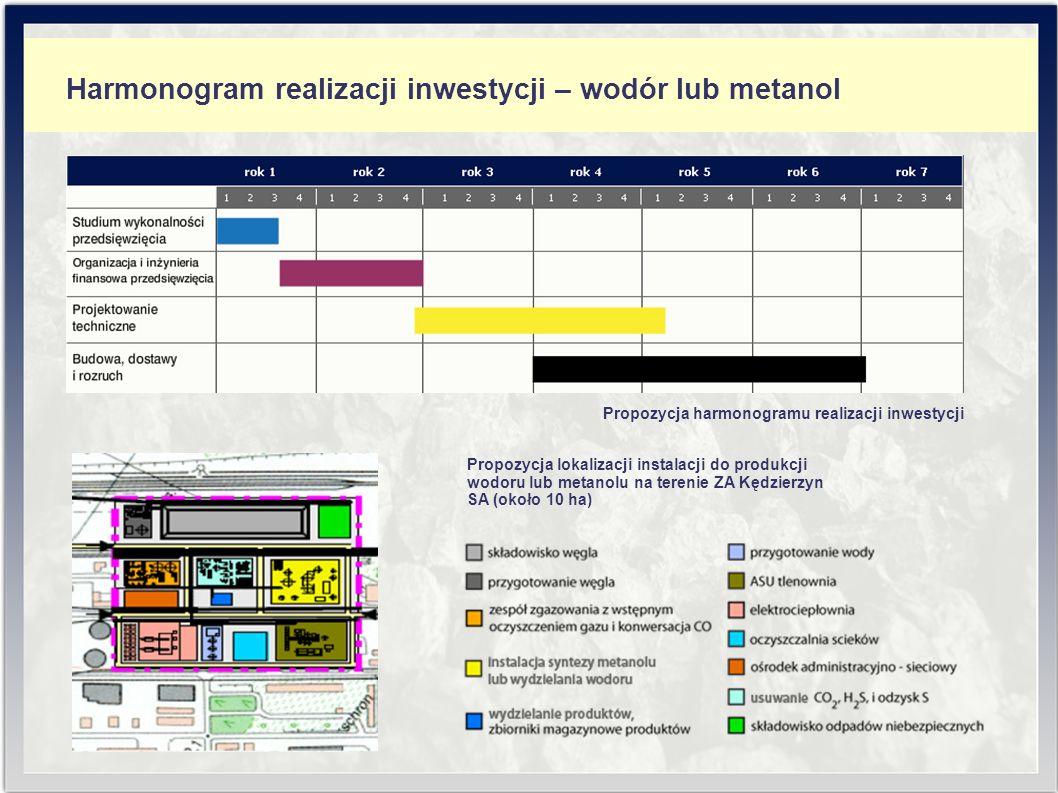 Harmonogram realizacji inwestycji – wodór lub metanol Propozycja harmonogramu realizacji inwestycji Propozycja lokalizacji instalacji do produkcji wodoru lub metanolu na terenie ZA Kędzierzyn SA (około 10 ha)