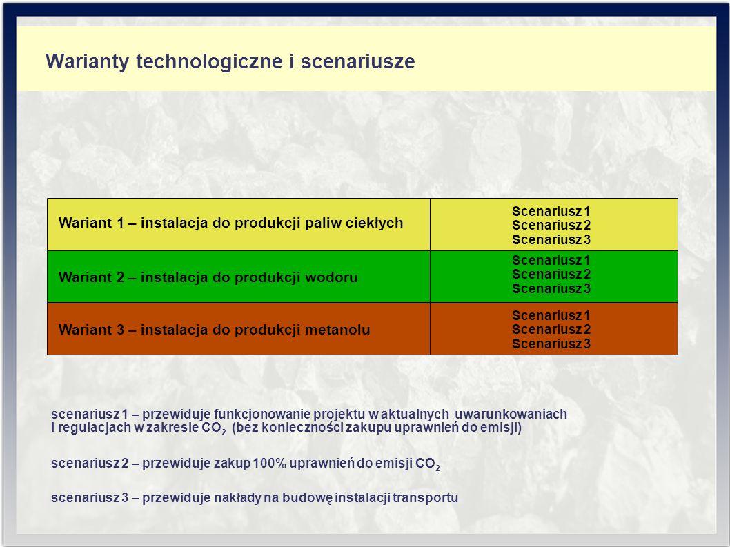 Zużycie surowców i produkcja - wodór Wielkości zużycia surowców i produkcji dla instalacji produkcji wodoru – wariant II