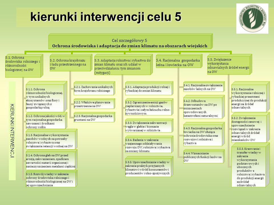 kierunki interwencji celu 5 KIERUNKI INTERWENCJI