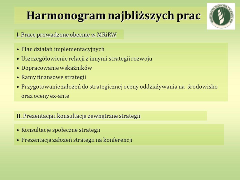 Plan działań implementacyjnych Uszczegółowienie relacji z innymi strategii rozwoju Dopracowanie wskaźników Ramy finansowe strategii Przygotowanie zało