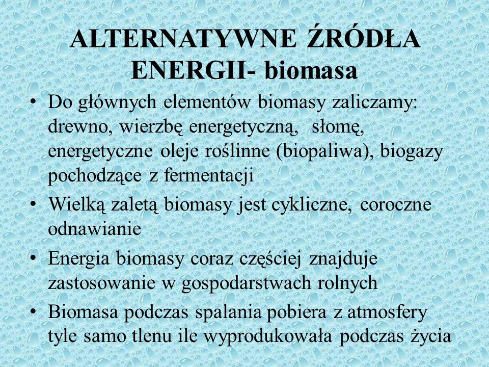 Do głównych elementów biomasy zaliczamy: drewno, wierzbę energetyczną, słomę, energetyczne oleje roślinne (biopaliwa), biogazy pochodzące z fermentacj