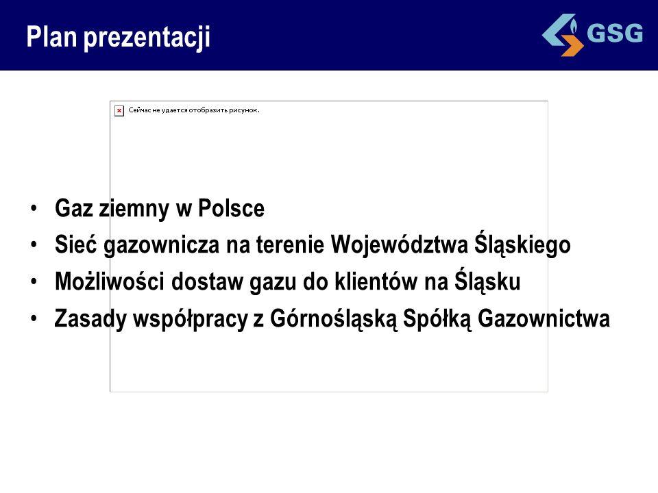 Plan prezentacji Gaz ziemny w Polsce Sieć gazownicza na terenie Województwa Śląskiego Możliwości dostaw gazu do klientów na Śląsku Zasady współpracy z