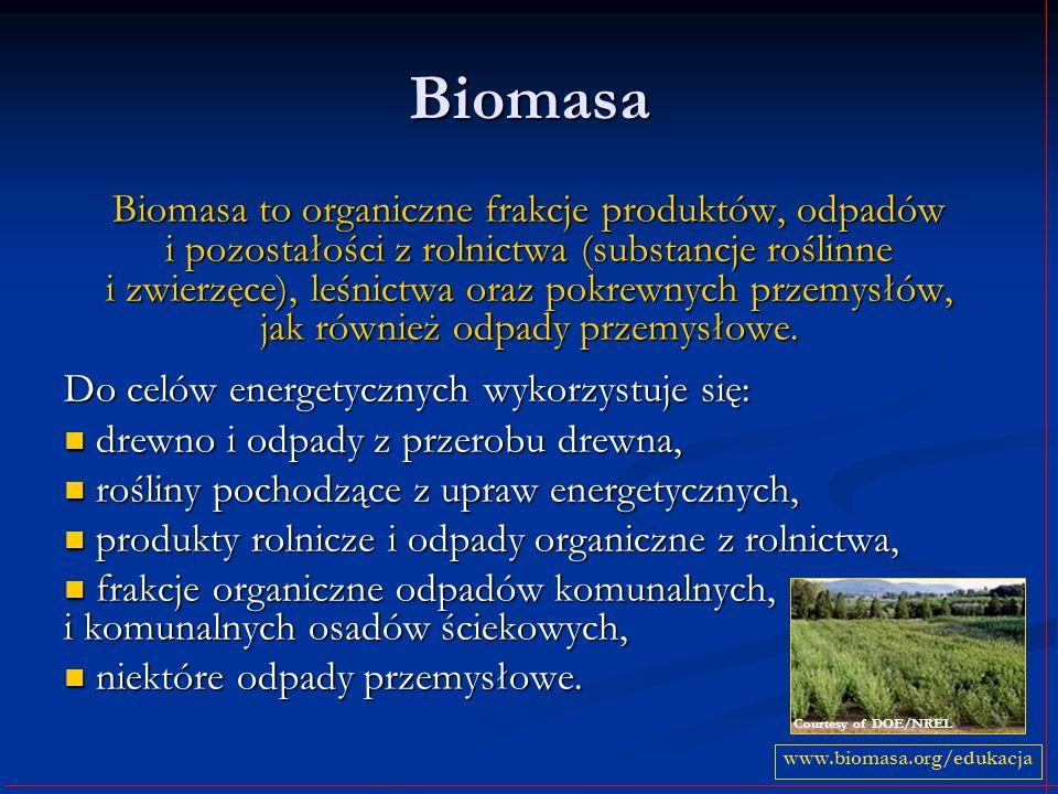 Biomasa Biomasa to organiczne frakcje produktów, odpadów i pozostałości z rolnictwa (substancje roślinne i zwierzęce), leśnictwa oraz pokrewnych przem