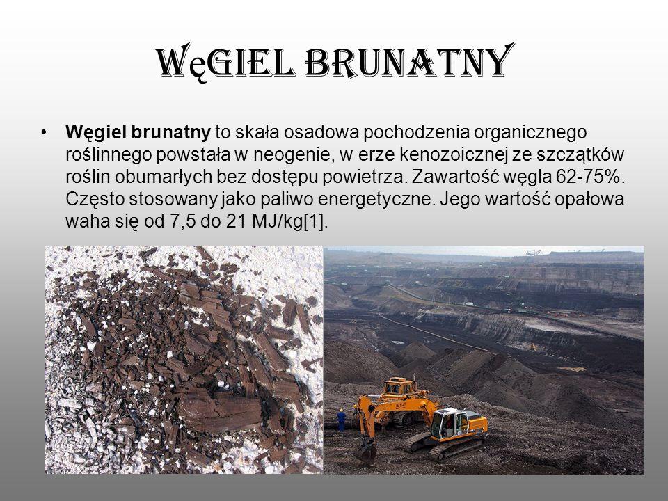 W ę giel brunatny Węgiel brunatny to skała osadowa pochodzenia organicznego roślinnego powstała w neogenie, w erze kenozoicznej ze szczątków roślin ob