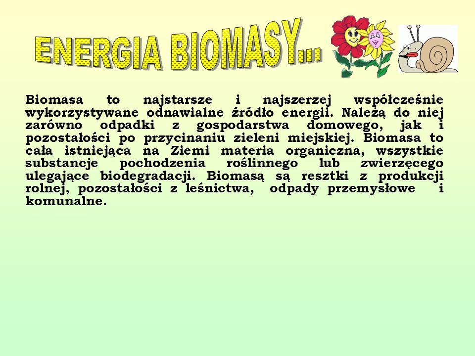 Biomasa to najstarsze i najszerzej współcześnie wykorzystywane odnawialne źródło energii. Należą do niej zarówno odpadki z gospodarstwa domowego, jak