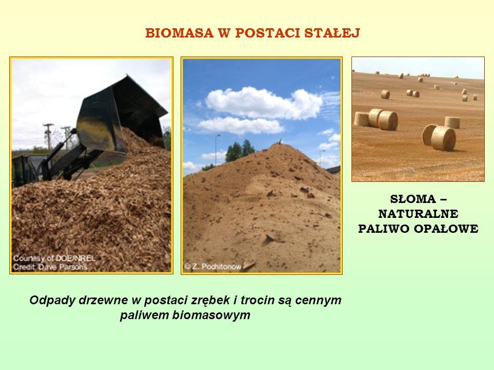 Odpady drzewne w postaci zrębek i trocin są cennym paliwem biomasowym BIOMASA W POSTACI STAŁEJ SŁOMA – NATURALNE PALIWO OPAŁOWE