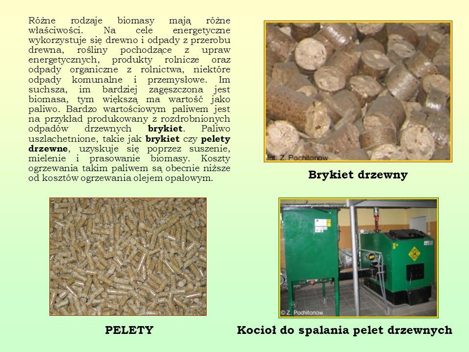 Różne rodzaje biomasy mają różne właściwości. Na cele energetyczne wykorzystuje się drewno i odpady z przerobu drewna, rośliny pochodzące z upraw ener