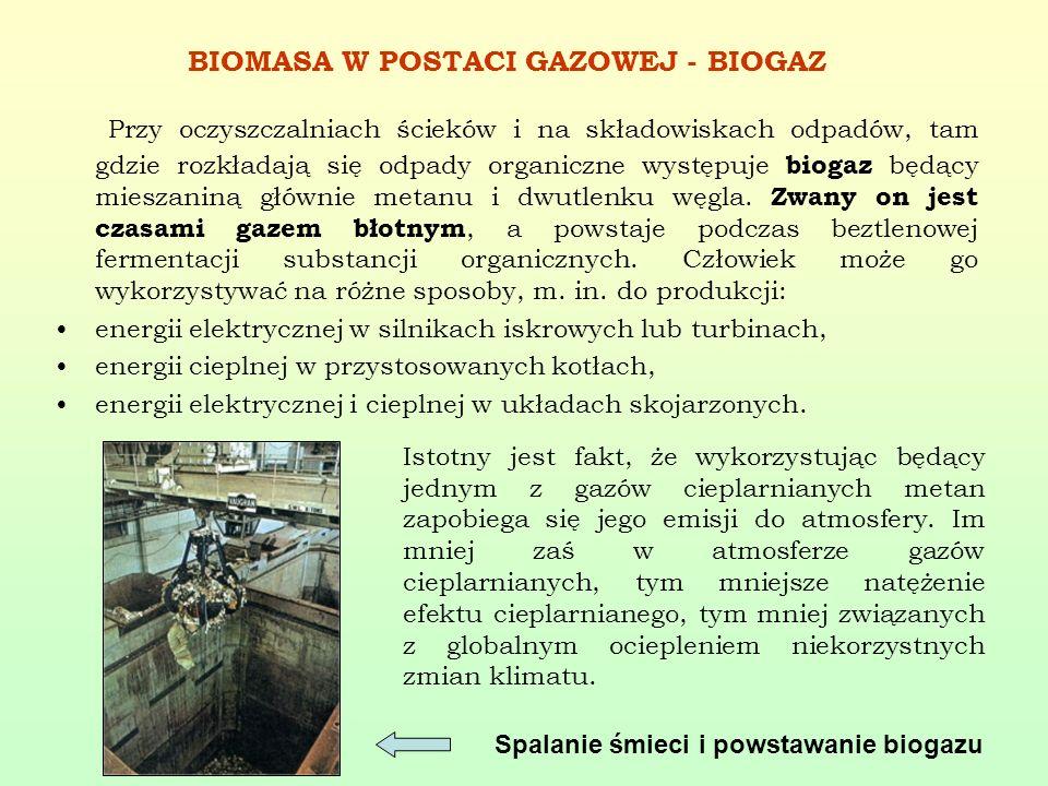 BIOMASA W POSTACI GAZOWEJ - BIOGAZ Przy oczyszczalniach ścieków i na składowiskach odpadów, tam gdzie rozkładają się odpady organiczne występuje bioga