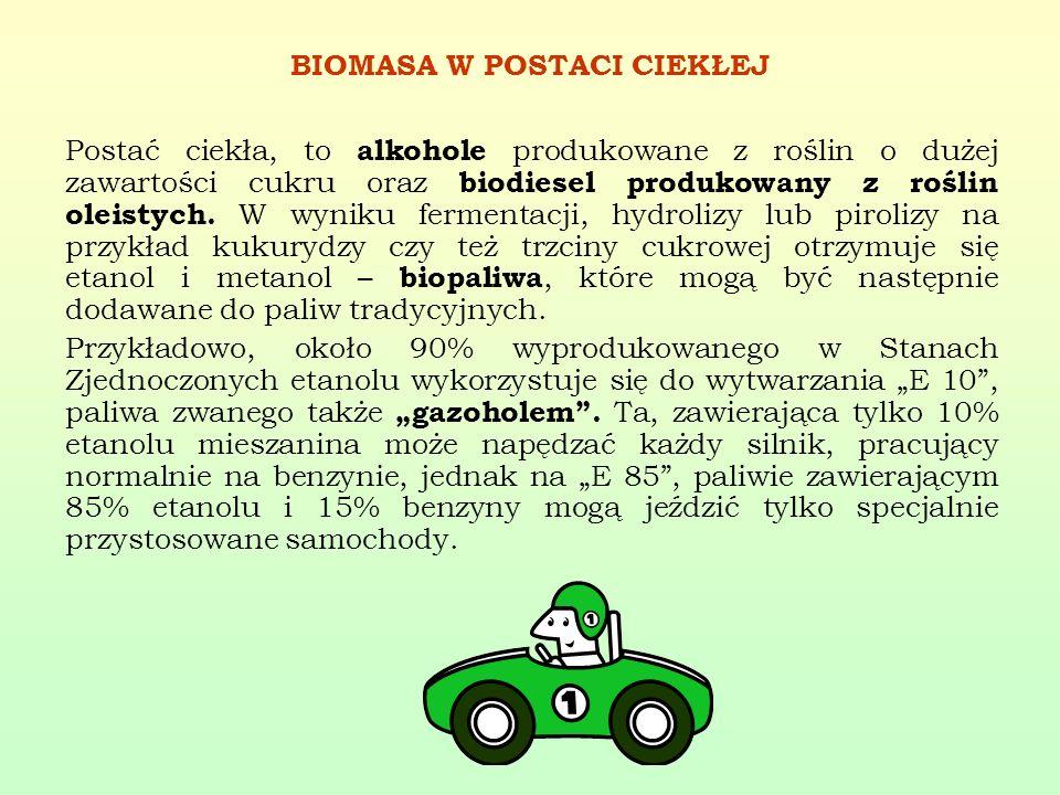BIOMASA W POSTACI CIEKŁEJ Postać ciekła, to alkohole produkowane z roślin o dużej zawartości cukru oraz biodiesel produkowany z roślin oleistych. W wy