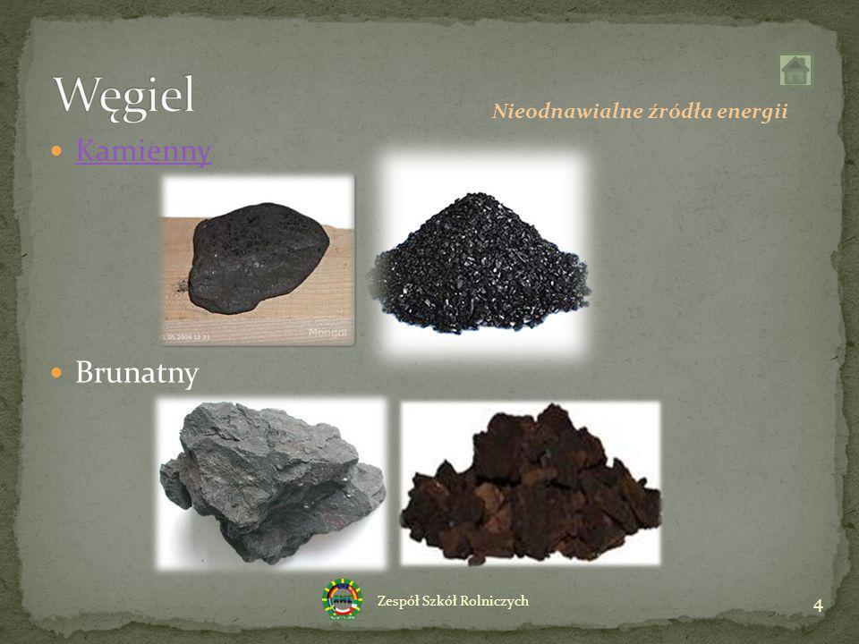 Kamienny Brunatny 4 Zespół Szkół Rolniczych Nieodnawialne źródła energii