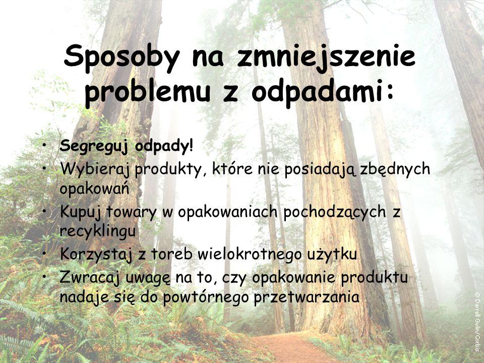 Wykonali: uczniowie ZSO w Sokółce Zuzanna Nowosada Patrycja Kułak Jakub Makarewicz Koniec