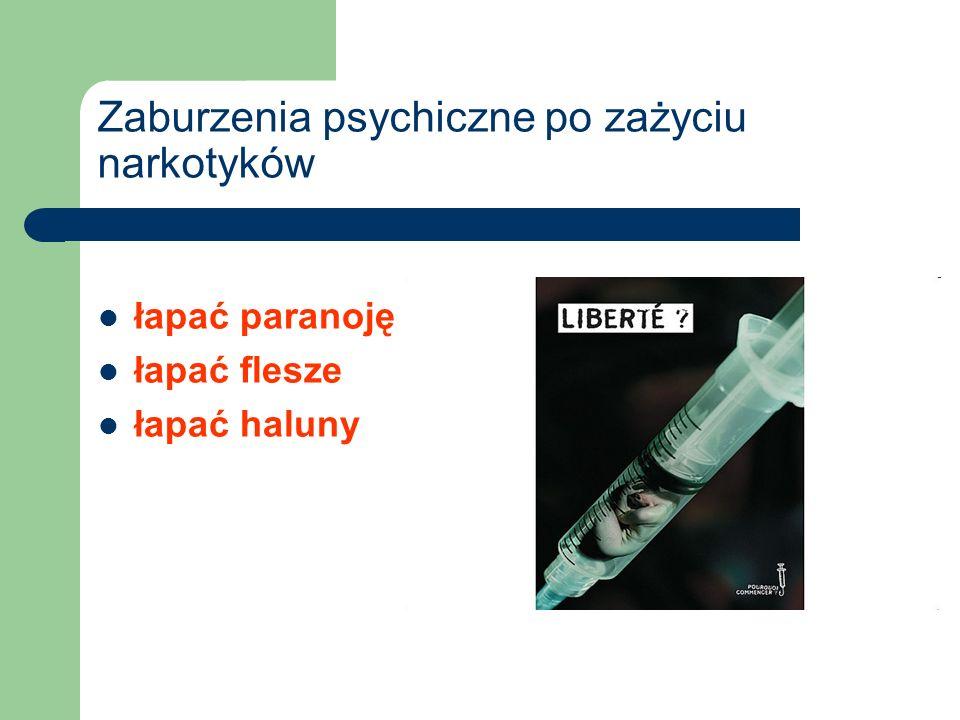 Zaburzenia psychiczne po zażyciu narkotyków łapać paranoję łapać flesze łapać haluny