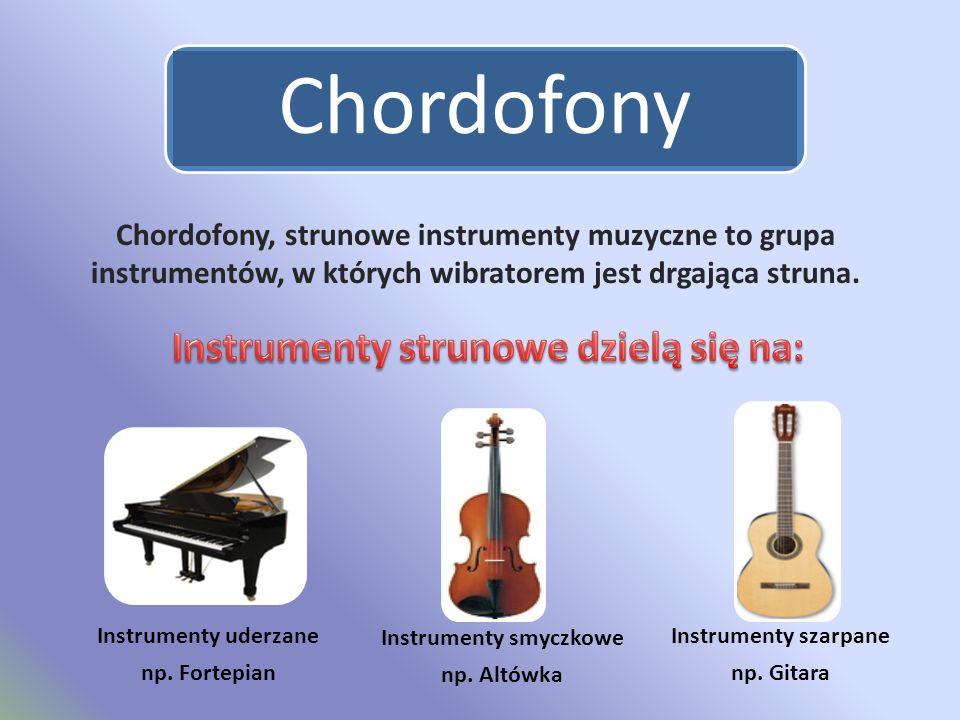 Chordofony Chordofony, strunowe instrumenty muzyczne to grupa instrumentów, w których wibratorem jest drgająca struna.
