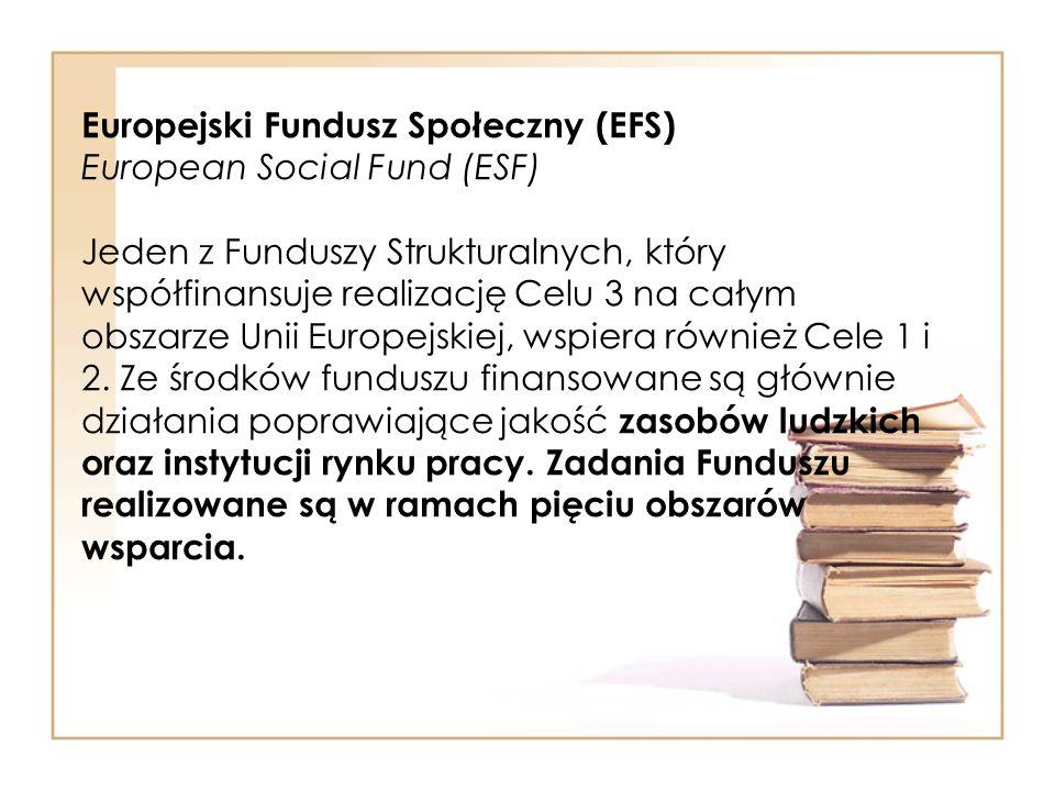 Europejski Fundusz Społeczny (EFS) European Social Fund (ESF) Jeden z Funduszy Strukturalnych, który współfinansuje realizację Celu 3 na całym obszarz