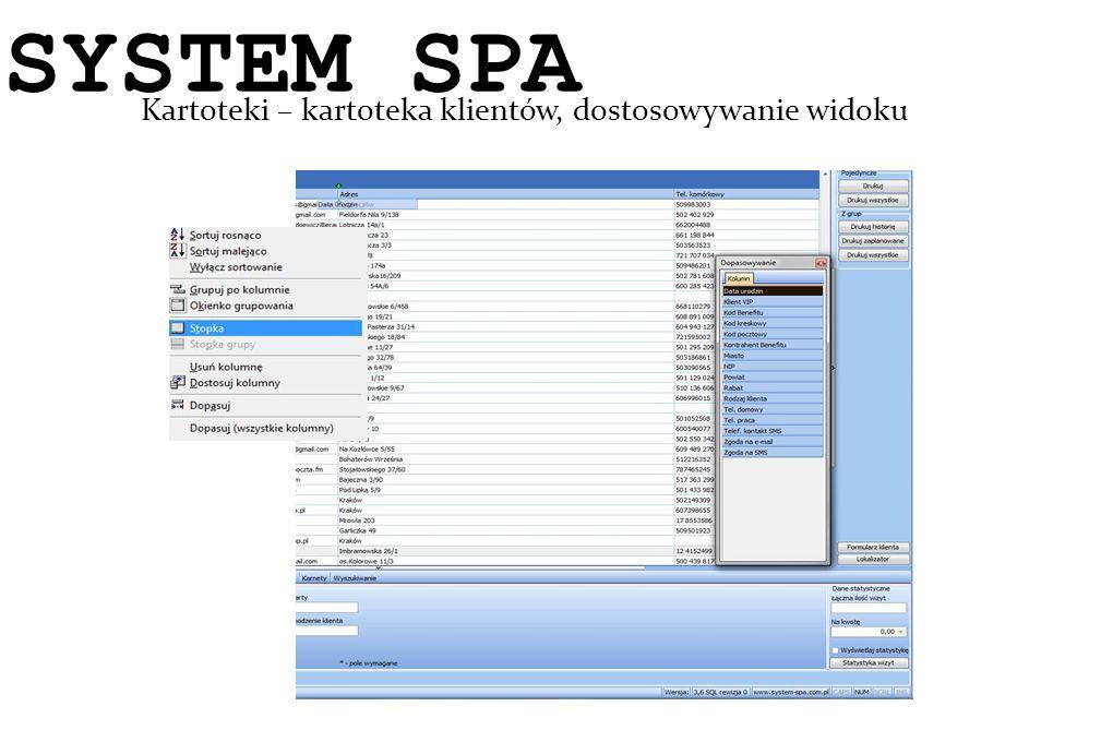 System SPA Kartoteki – kartoteka klientów, dostosowywanie widoku SYSTEM SPA