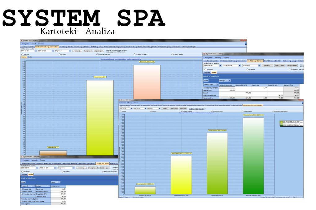 System SPA Kartoteki – Analiza SYSTEM SPA