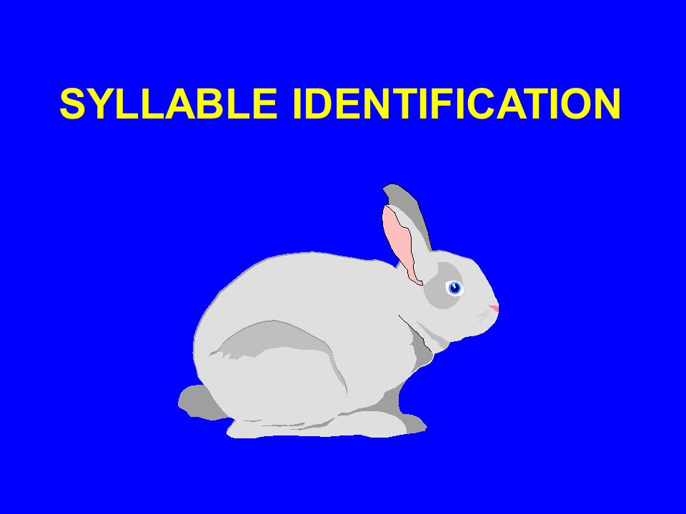 SYLLABLE IDENTIFICATION