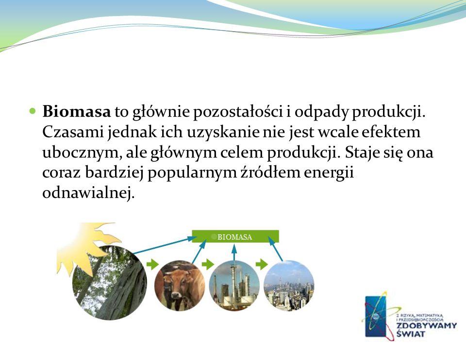 Biomasa to głównie pozostałości i odpady produkcji. Czasami jednak ich uzyskanie nie jest wcale efektem ubocznym, ale głównym celem produkcji. Staje s