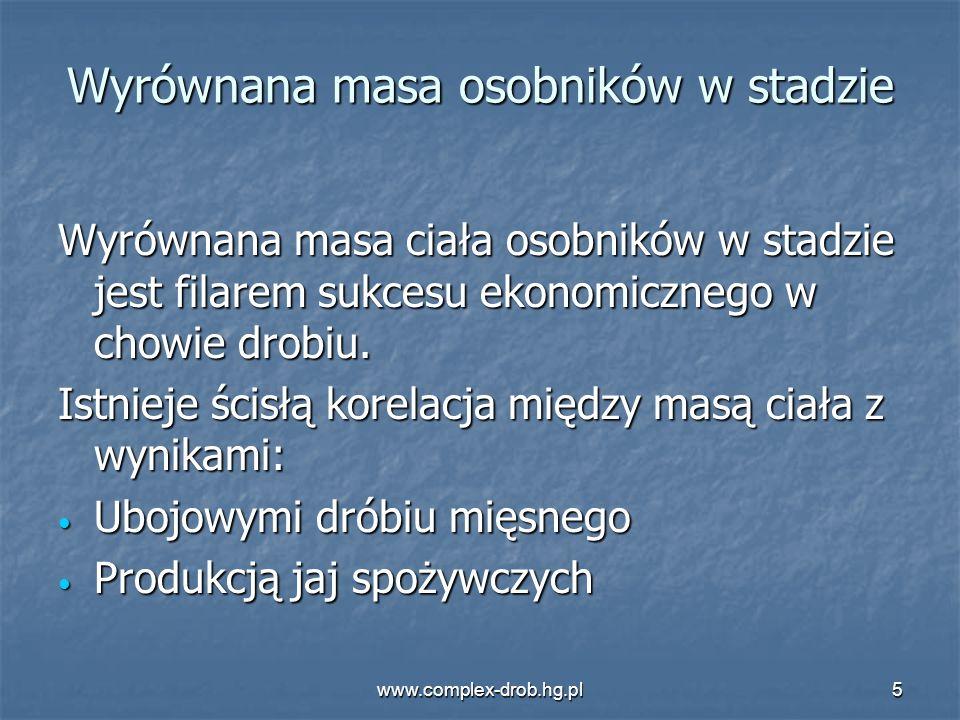 www.complex-drob.hg.pl5 Wyrównana masa osobników w stadzie Wyrównana masa ciała osobników w stadzie jest filarem sukcesu ekonomicznego w chowie drobiu