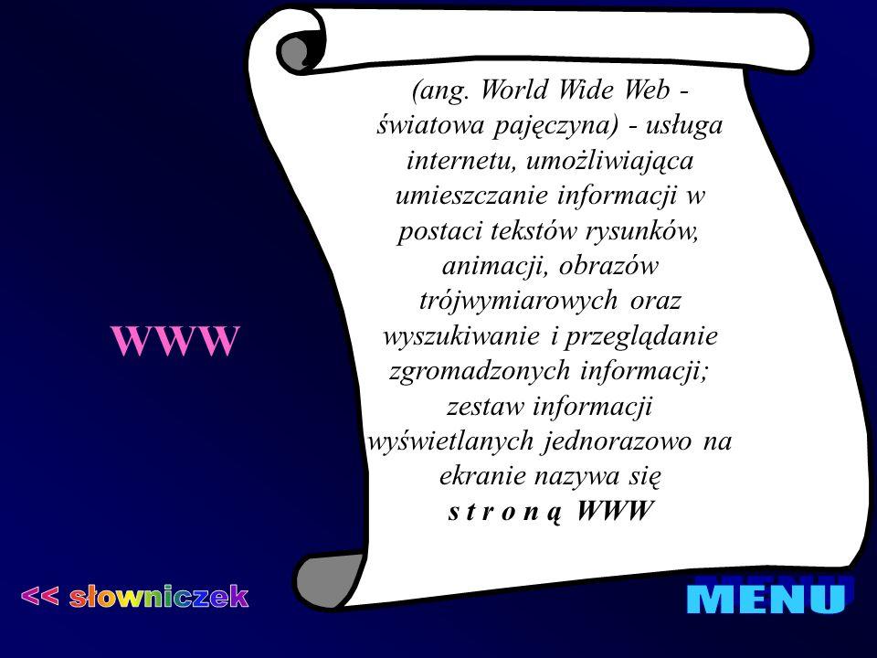 WWW (ang. World Wide Web - światowa pajęczyna) - usługa internetu, umożliwiająca umieszczanie informacji w postaci tekstów rysunków, animacji, obrazów