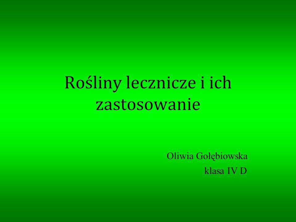 Rośliny lecznicze i ich zastosowanie Oliwia Gołębiowska klasa IV D