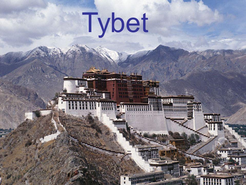 Dzięki różnicy w wysokości nad poziomem morza w Tybecie występuje roślinność zarówno tundrowa, stepowa, pustynna, jak i alpejska.