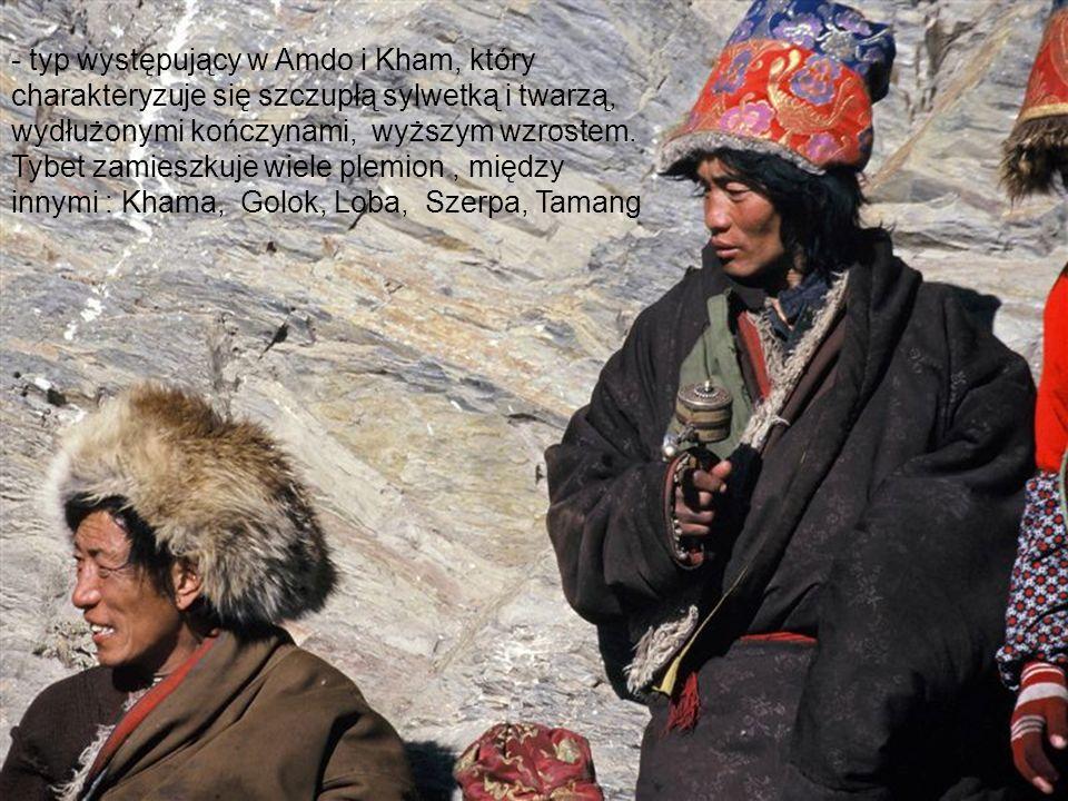 - typ występujący w Amdo i Kham, który charakteryzuje się szczupłą sylwetką i twarzą, wydłużonymi kończynami, wyższym wzrostem. Tybet zamieszkuje wiel